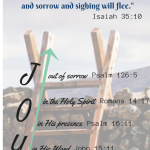 Joy-in-salvation-25282-2529