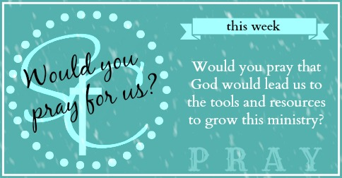 Week Twenty Four of our Sunday Blog Prayers! Just one line, once a week. Will you pray for our blog, written by and for Christian women? | Satisfaction Through Christ