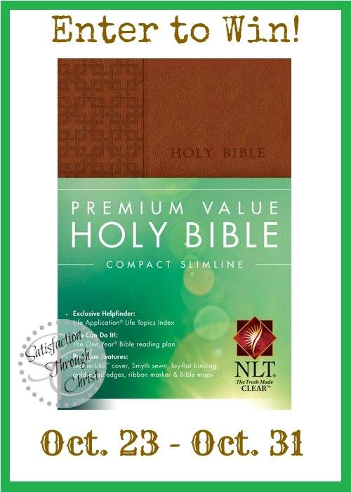 NLT Plain text Bible Giveaway