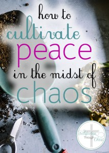 Do you feel as though you're standing in the midst of chaos and you don't know how to find peace? Follow this simple tip and learn how to find real peace that comes from living from the core of who God made you to be!